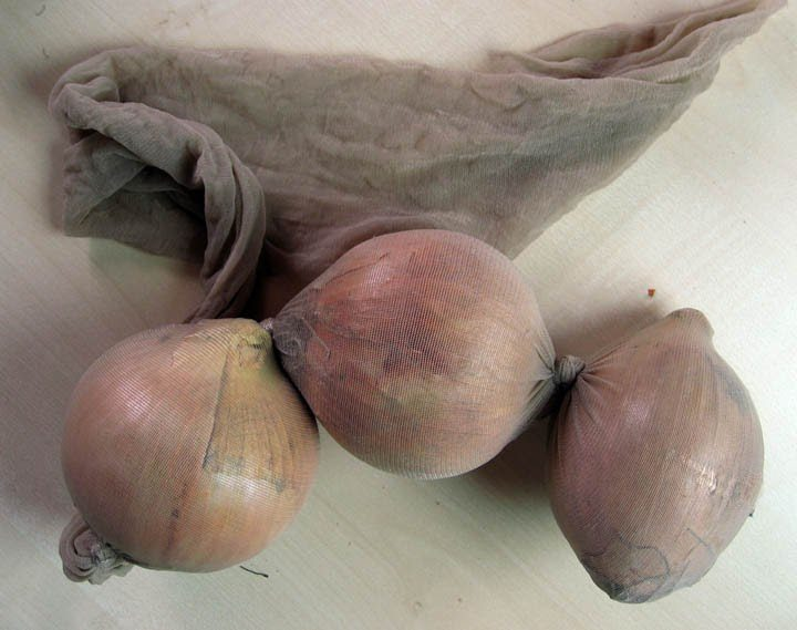 Store Onions in Pantyhose to Last Longer