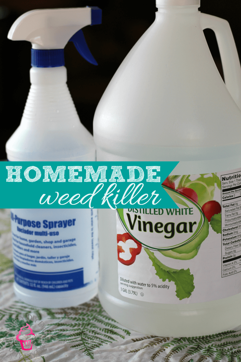 Diy Natural Homemade Weed Killer