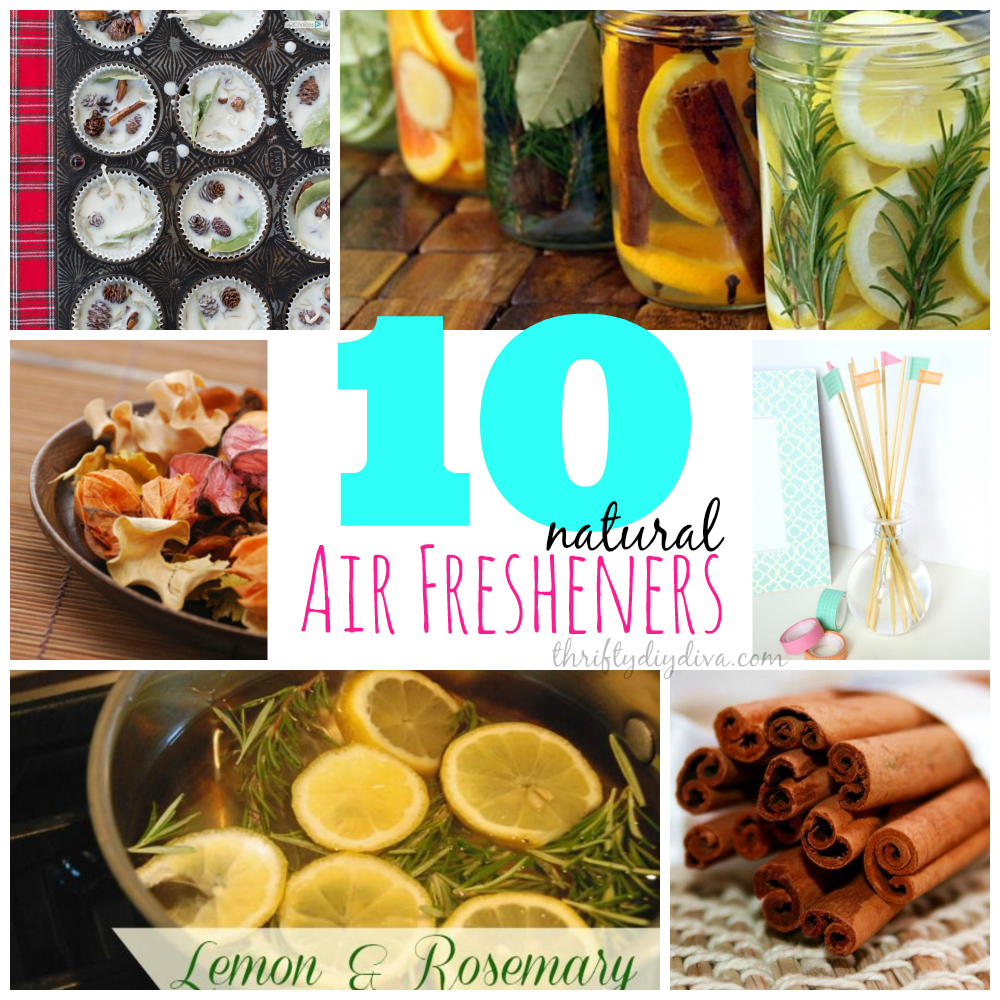 DIY Homemade Air Fresheners